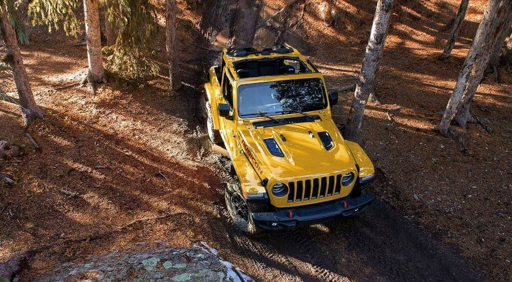 A yellow 2019 Jeep Wrangler is on a muddy woods trail near Dallas, TX.