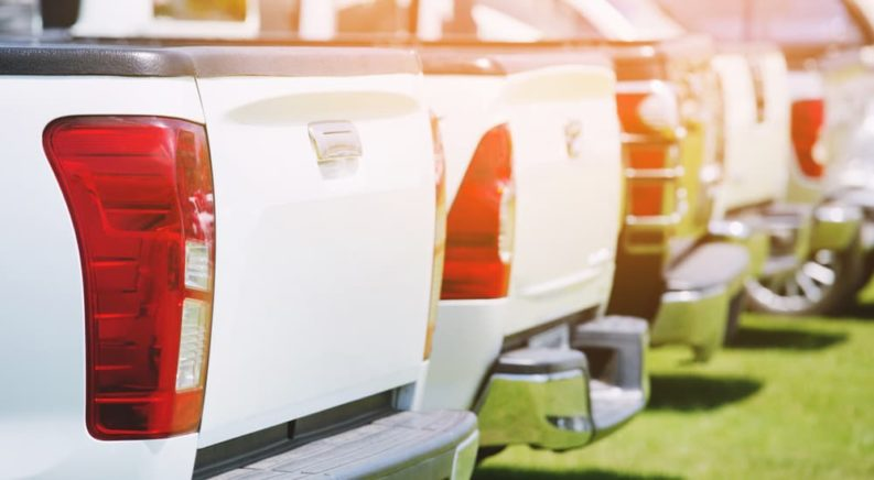 A row of white used trucks for sale at a local dealer.