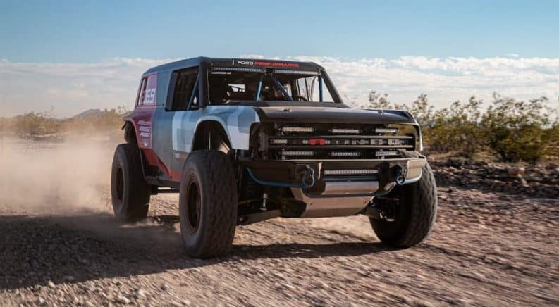 The Bronco is Back and Why You Should Be Excited