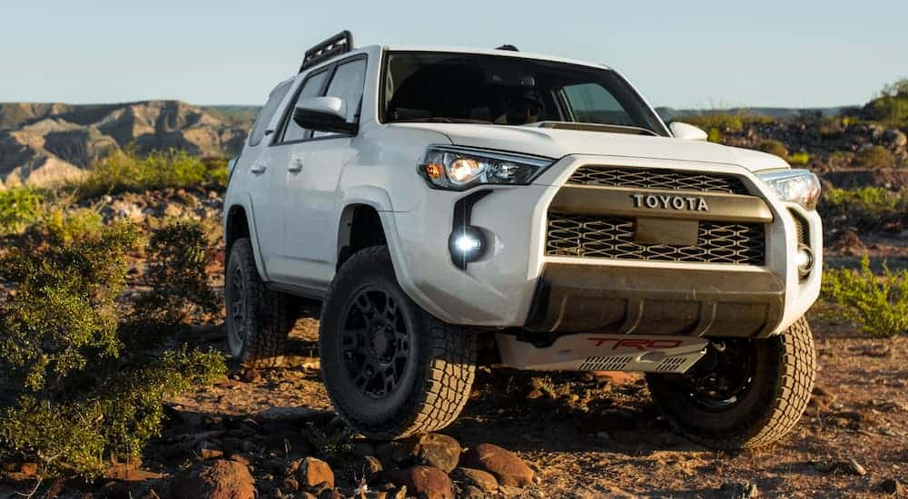 A white 2020 Toyota 4Runner, which is a popular option among Toyota SUVs, is driving over rocks on a dirt trail.