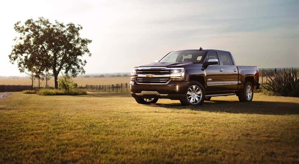 A burgundy 2017 Chevy Silverado is parked on grass next to a tree.