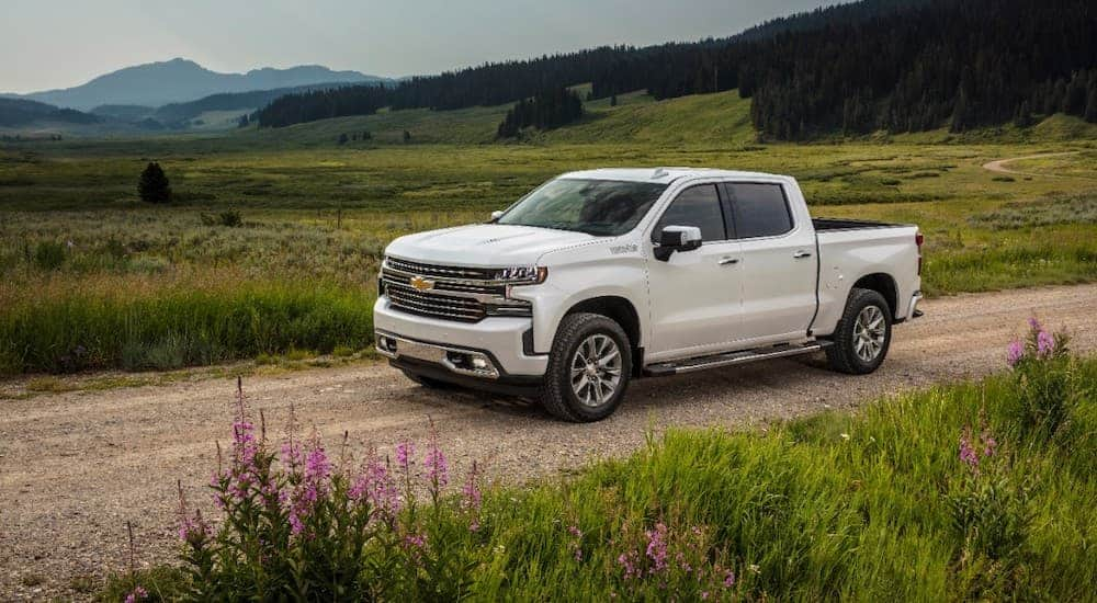 A white 2019 used Chevy Silverado is driving on a dirt road past a field.