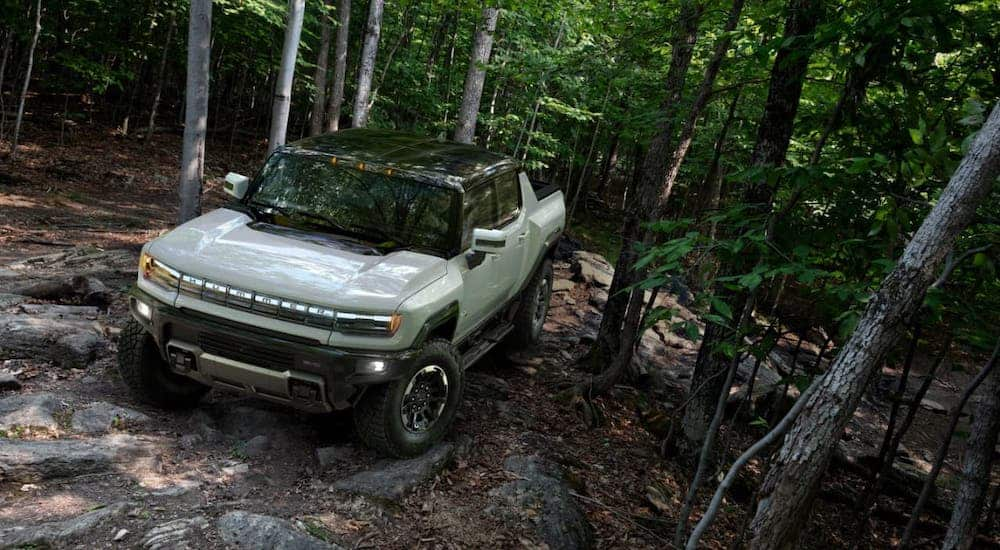 A white 2022 GMC Hummer EV Truck is driving on a woodland trail.